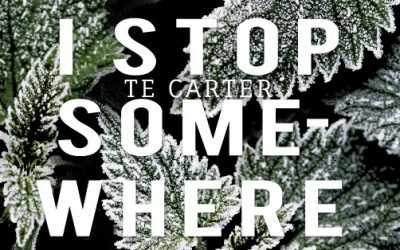 Book Review: 'I Stop Somewhere' by T.E. Carter